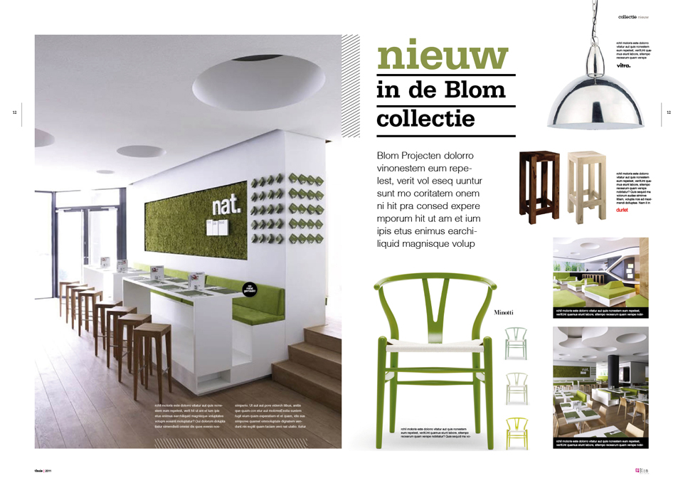 http://www.merkkamer.nl/wp-content/uploads/2011/09/blom-magazine-6.jpg