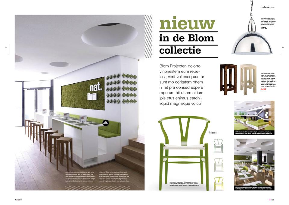 Concept magazine: Thuis bij Blom